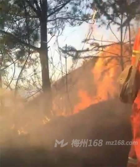平远东石发生火烧山,火势很大!
